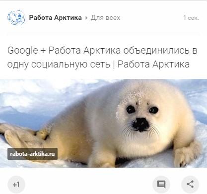 Гугл плюс Работа Арктика