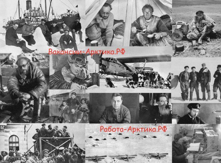 Где и кто работал в Арктике историческая справка