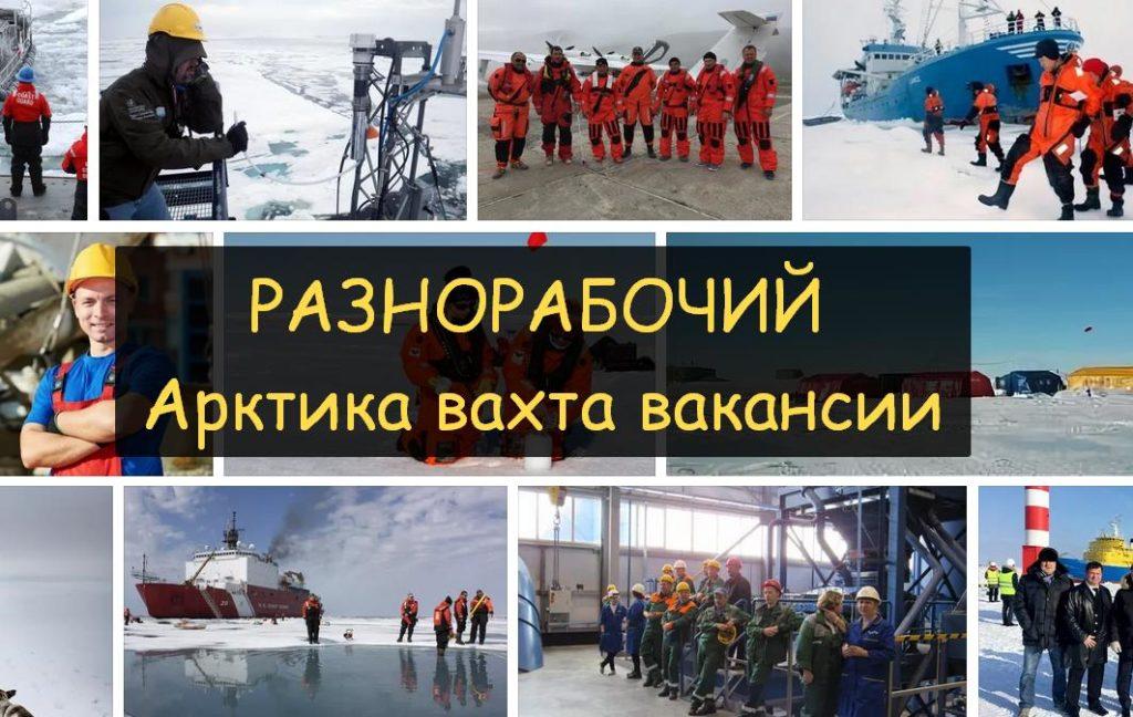 работа ежедневный Арктика 2020 вахта вакансии