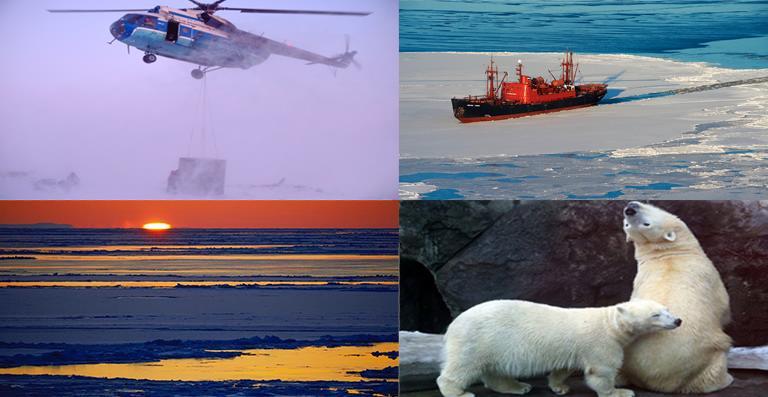 Актуальные вакансии 2020-2021 в Арктике свежие