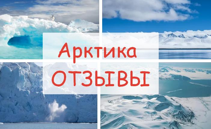 отзывы сотрудников Арктика до 2100 года вакансии работа