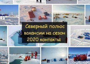 Свежие вакансии на Северном полюсе до 2028