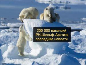 Арктика вахтой вакансии прямые