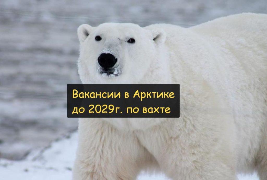 По вахтовому методу в Арктику на работу