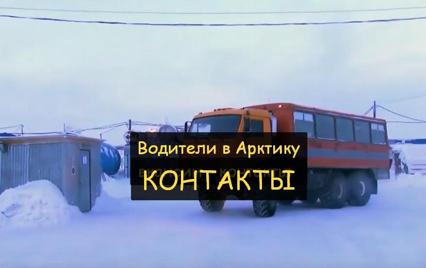 арктика водители официальный сайт