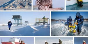 Арктика 2020 разнорабочий вакансии